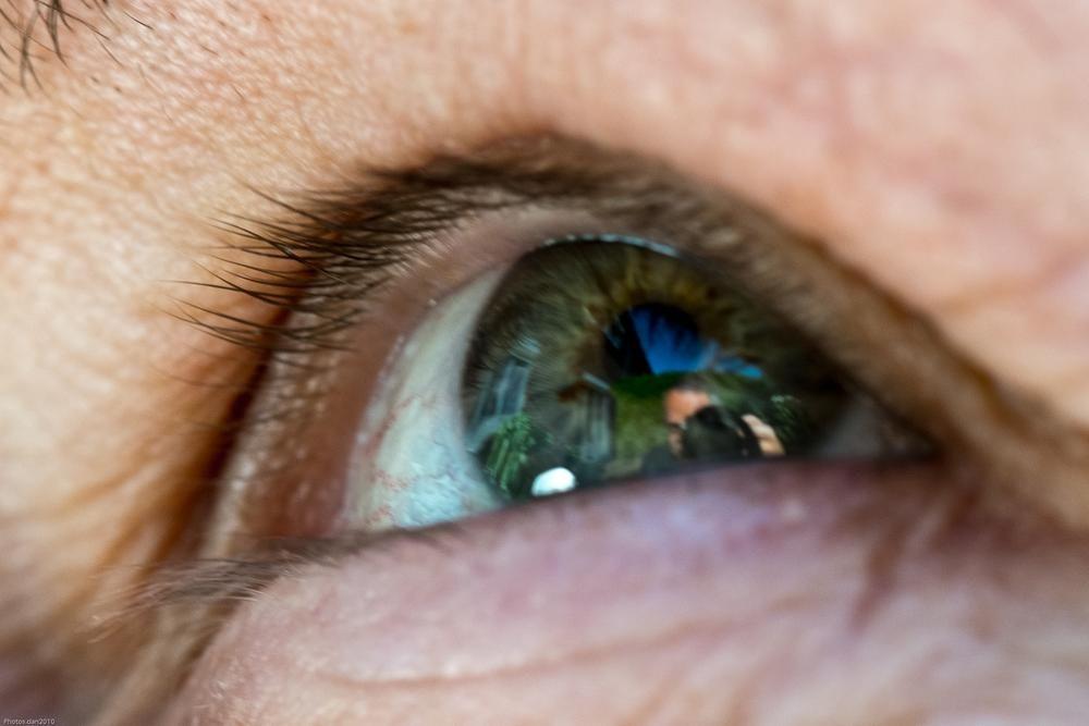 Je t'est a l'oeil....... by photosdan