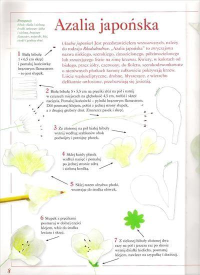 Kwiaty Z Bibuly Bibula Halszka64 Chomikuj Pl Strona 3 Fruit