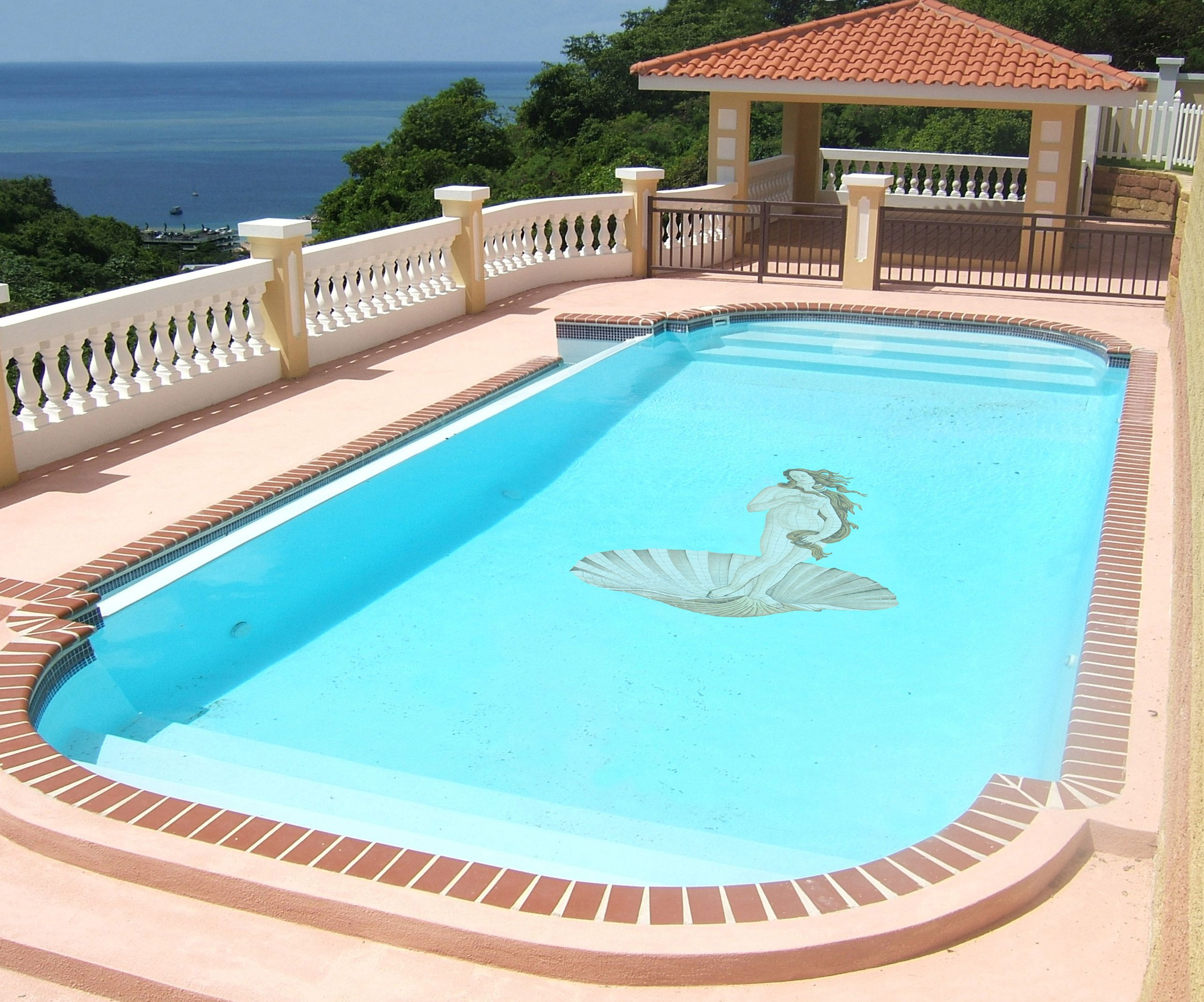 Custom Venus Mosaic Tile Design   Swimming Pool Application