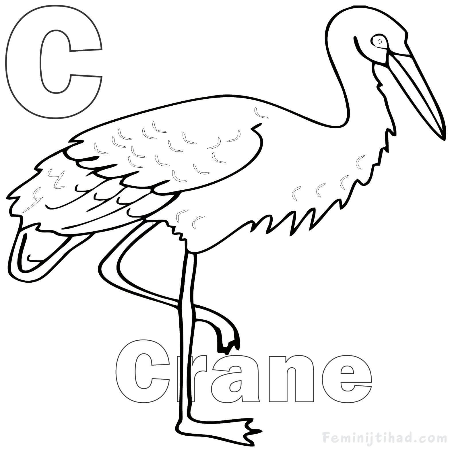 Letter C For Crane Coloring Pages For Kids Bird Coloring Pages