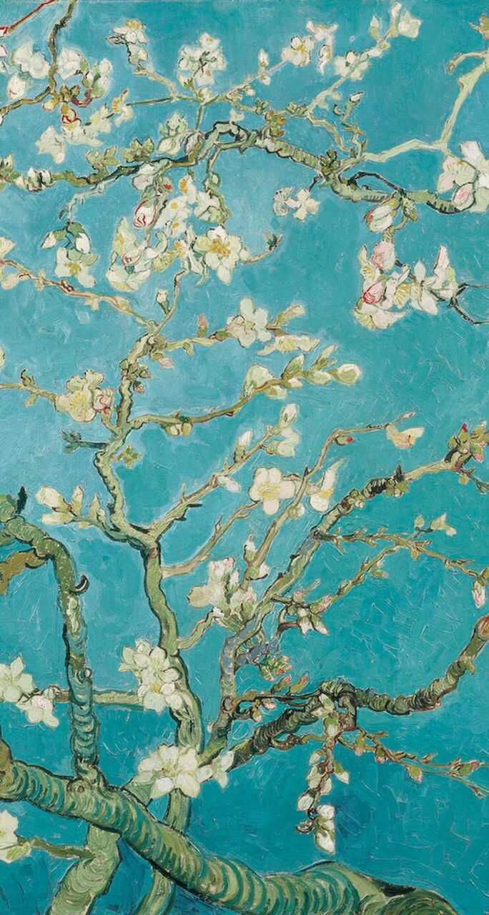 Almond blossom wallpaper | iPhone wallpaper | Pinterest | Almonds ... for Almond Blossom Van Gogh Poster  59nar