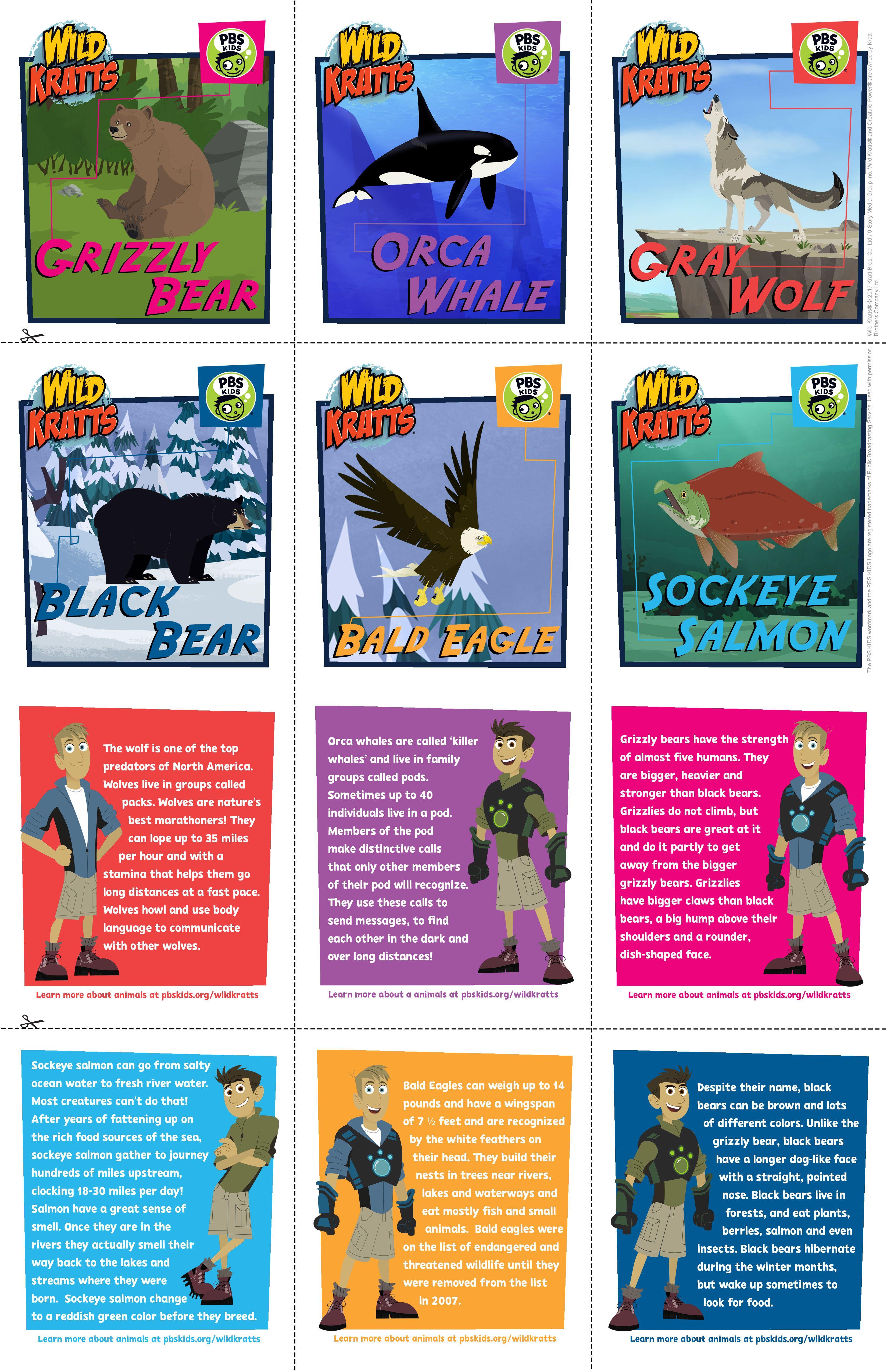 Wild Kratts Wild Alaska Hero S Journey Trading Cards To