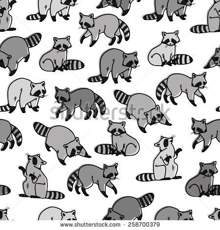 raccoon photos et images de stock shutterstock