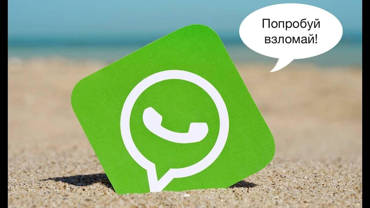 Популярный мессенджер WhatsApp подвергся волне спама. 18.09.2016