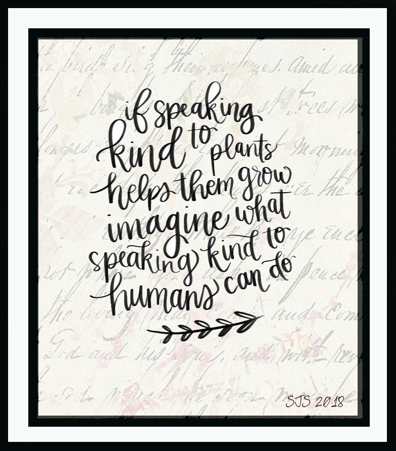 Quips N Quotes Make Someone Smile Today.*шоґd Дят ❀⊱Quips & Quotes .