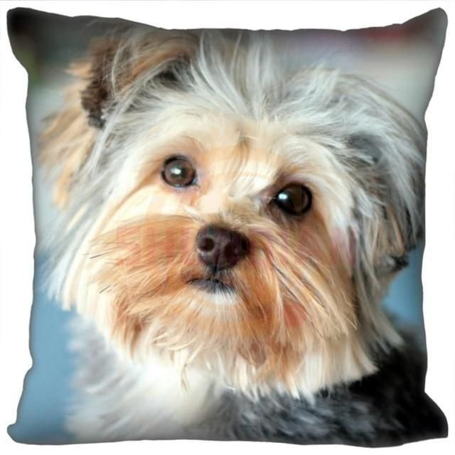 Yorkshire Terrier Pillow Cases yorkshireterrier