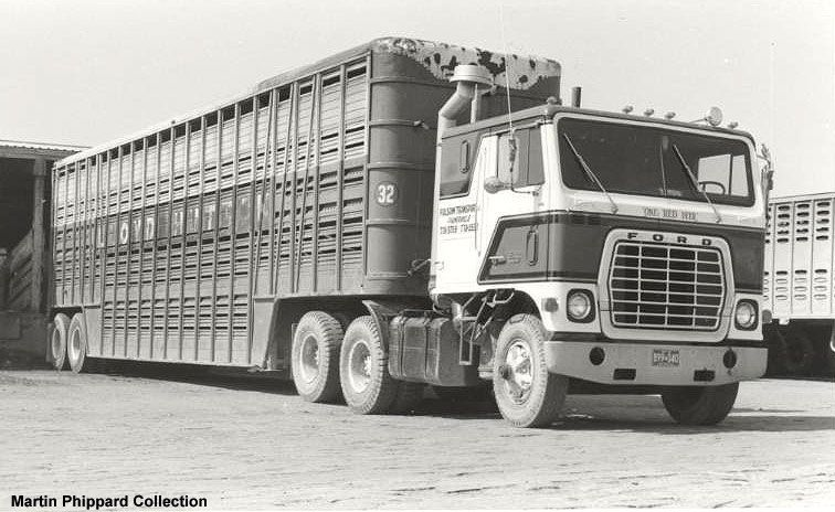 FORD Coe | Cattle Hauling