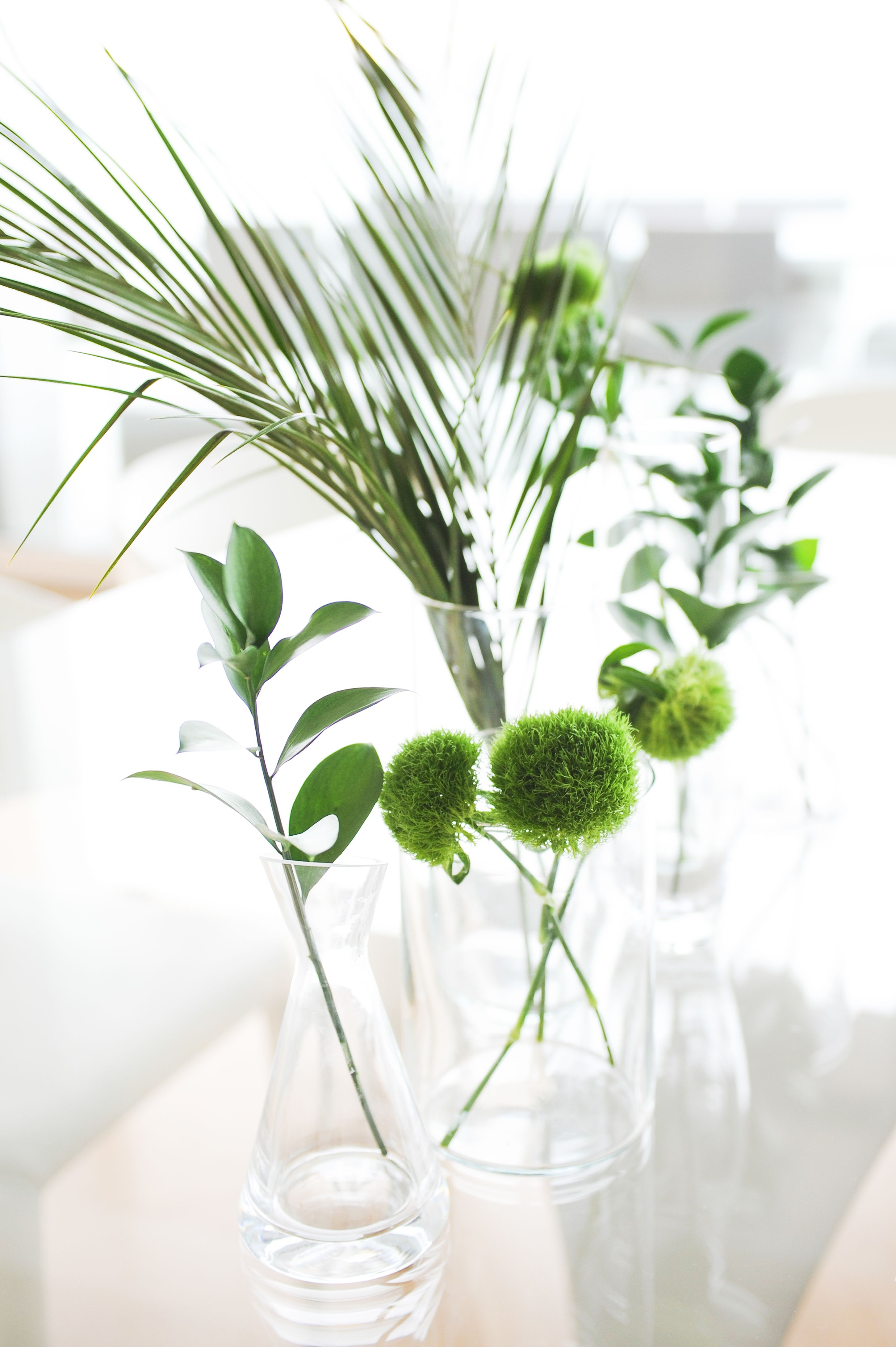 When decorating we can't get enough of plants in glass vases.