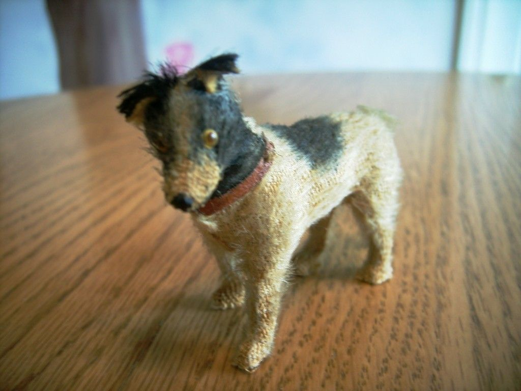 Early 1900 S Mohair Border Collie Herding Dog For Antique Doll