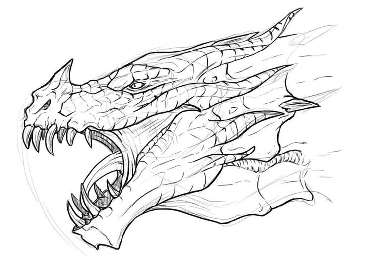 Dragon Drawing | Imaginary Dragons are Awesome! | Pinterest