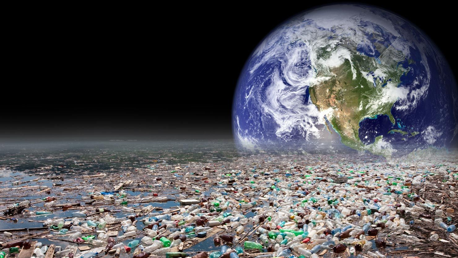 Oceans Will Have More Plastic Than Fish By 2050 Study Says Save
