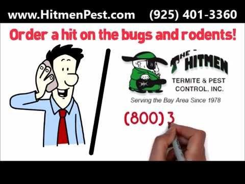 Check out this awesome post San Ramon Pest Control and Certified Orange Oil Pros at Hitmen Termite and Pest Control Surpassed 1...