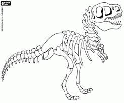 image result for dino skelet kleurplaat dinosaur