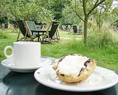 Tea Scones At The Orchard Tea Rooms Grantchester With Images