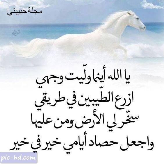 صور جميلة للفيس بوك بوستات فيس بوك حلوه جدا Arabic Quotes Holy Quran Islamic Quotes
