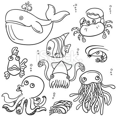Cartoon Sea Animal In Line Art Style Black And White Cartoon Sea Animals Easy Drawings Easy Drawings For Kids