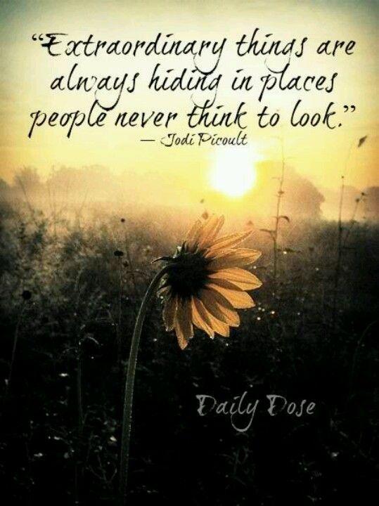 Beautiful and true