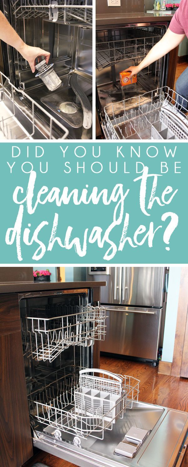 How to Clean a Dishwasher is part of Clean dishwasher, Cleaning your dishwasher, Cleaning hacks, House cleaning tips, Toilet cleaning, Clean house - How often do you clean your dishwasher  I'll confess that I don't clean mine nearly often enough! I wash dishes in it daily, so surely it's getting clean at the same time, right  One look