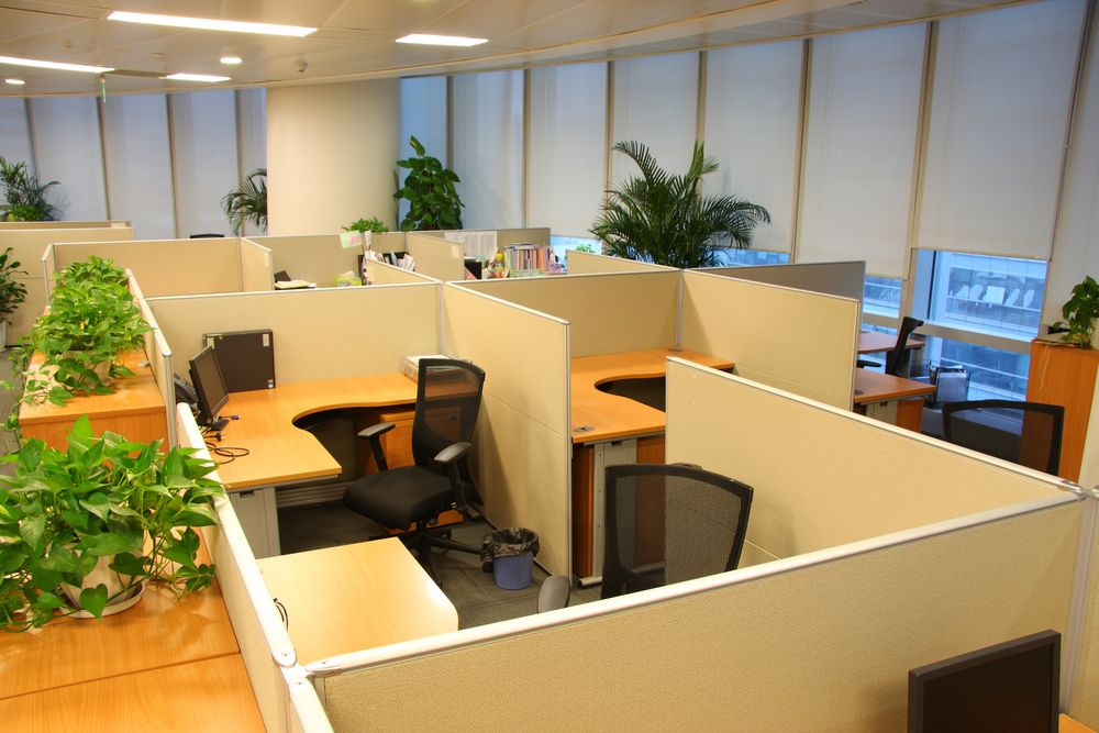 Cubicle layout for for Commercial office space design ideas