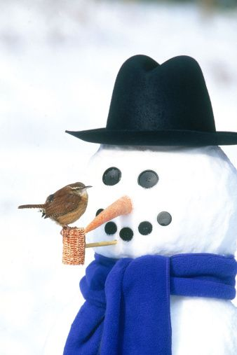 snowman getty images