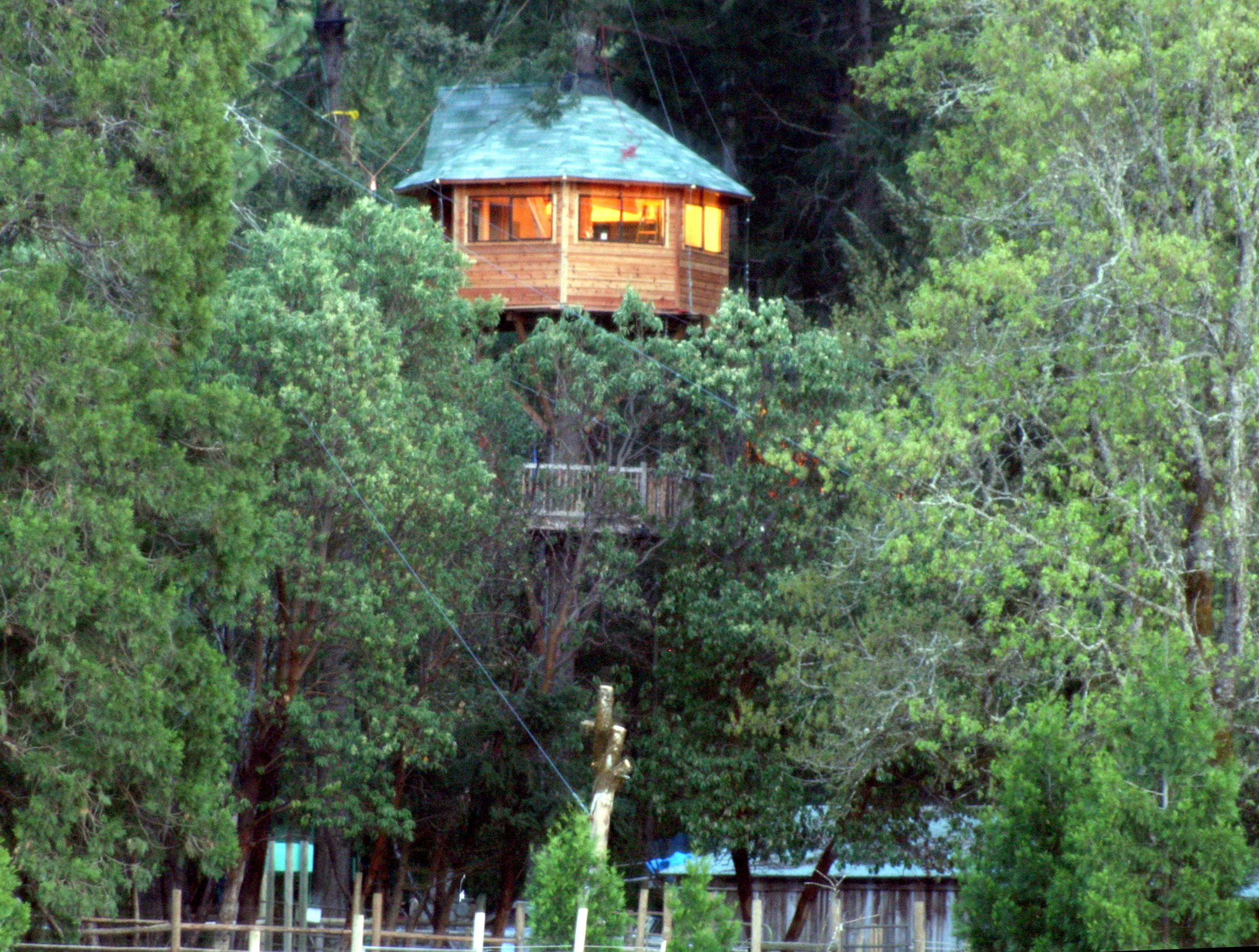 6x Inspirerende Boomhutten : Tree house resort in oregon. the perfect vacation spot for peter pan