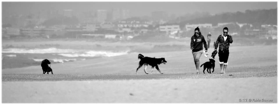 Gulpilhares [2012 - Gaia - Portugal] #fotografia #fotografias #photography #foto #fotos #photo #photos #local #locais #locals  #europa #europe #pessoa #pessoas #persona #personas #people #praia #praias #playa #playas #beach #beaches