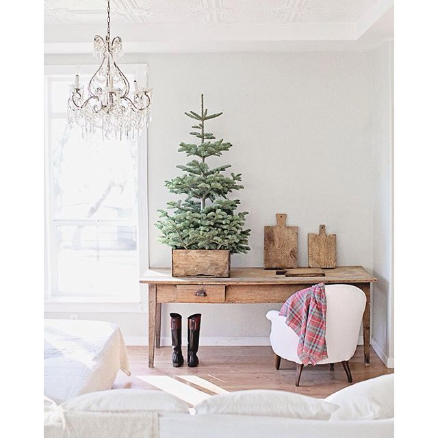 """""""A Christmas tree in a vintage French crate.... #dwfrenchfarmhousechristmas"""" Photo taken by @dreamywhiteslifestyle on Instagram, pinned via the InstaPin iOS App! http://www.instapinapp.com (11/18/2015)"""
