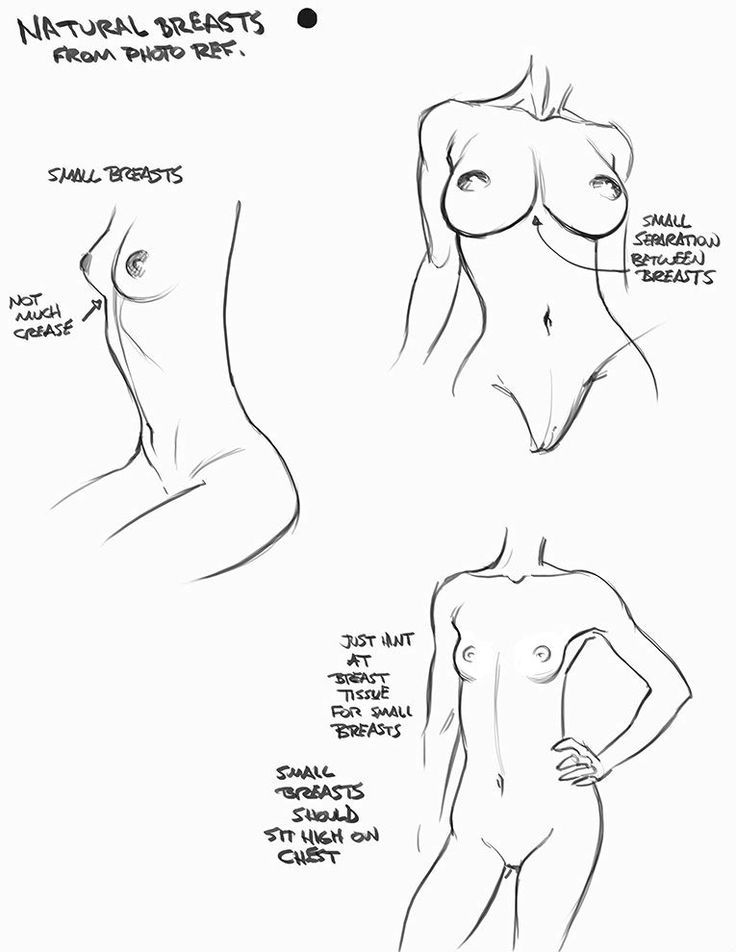 female anatomy drawing anime torso - Google Search | Drawing ...