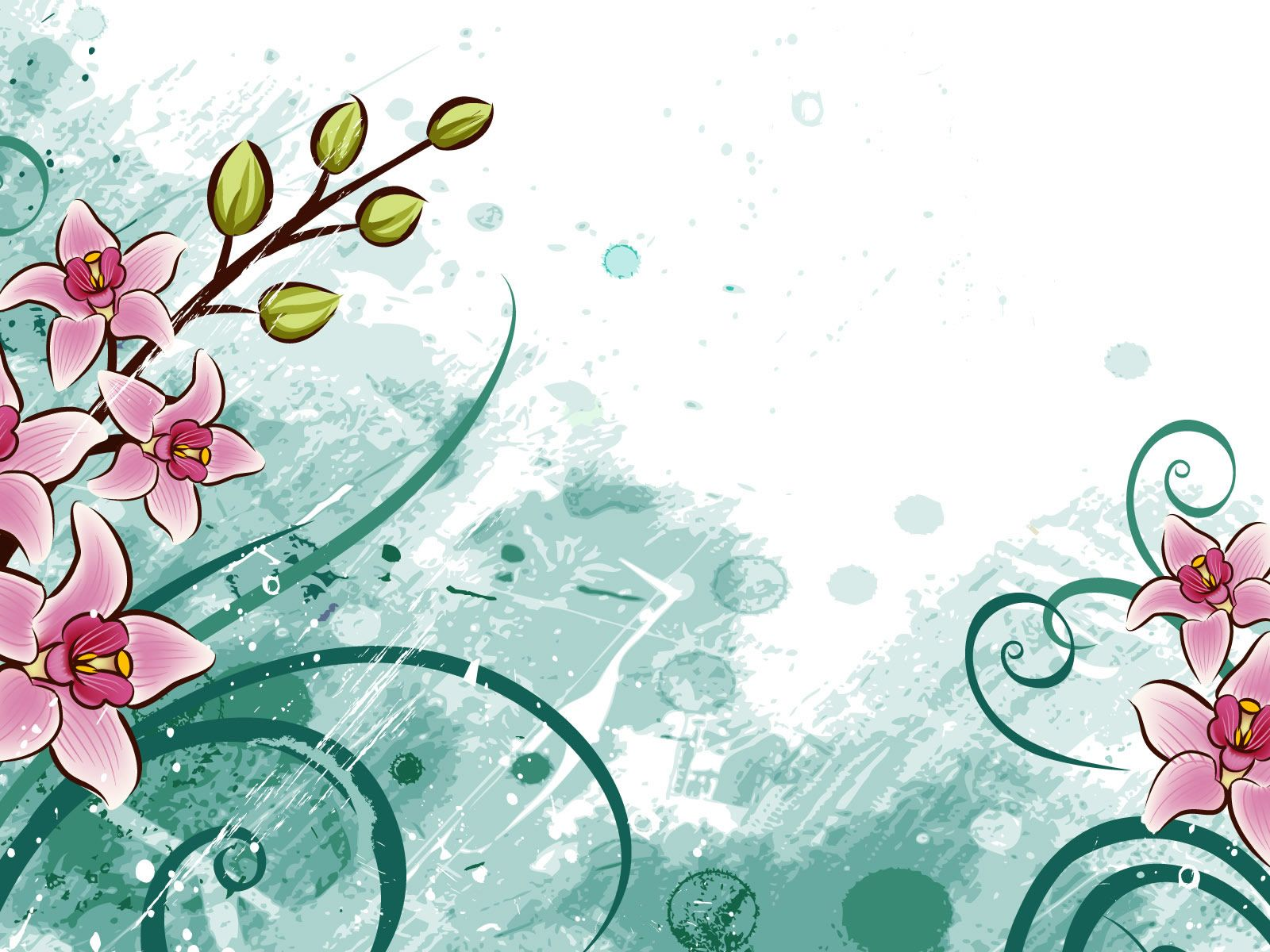 Fondos De Flores Wallpapers Hd Gratis: Flores Para Fondo En Hd Gratis Para Descargar 6 HD
