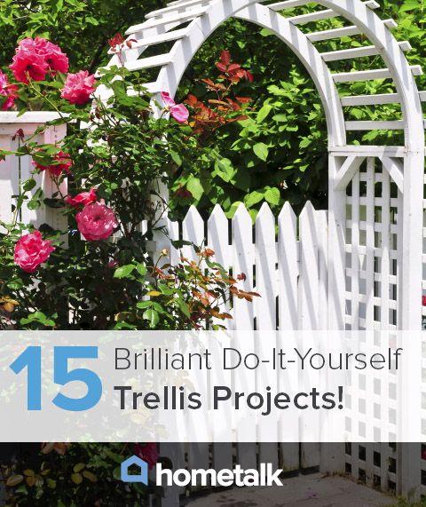 Diy trellises idea box by barb c gardens diy trellis and trellis diy trellises idea box by barb c solutioingenieria Images