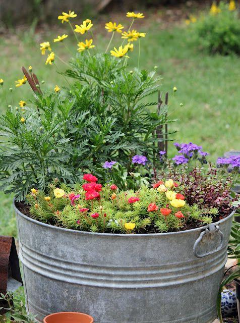 washtub container garden   My backyard ideas   Pinterest   Gardens ...