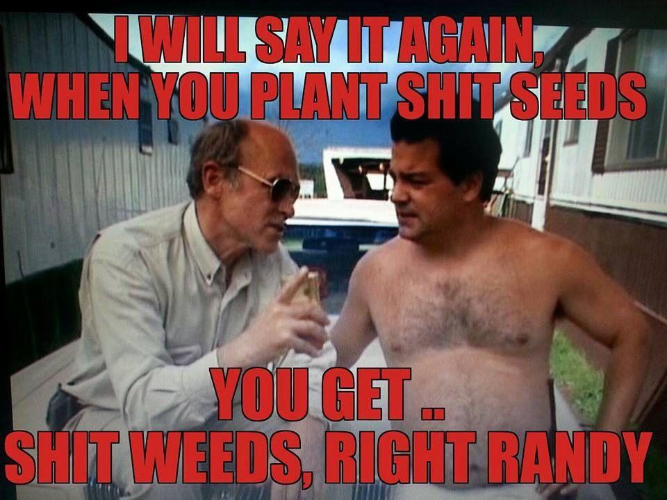 Trailer Park Boys Shit Weeds Trailer Park Boys Quotes Trailer Park Boys Meme Trailer Park Boys
