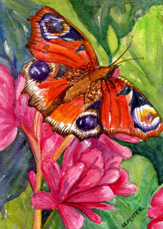 Butterfly Watercolor Painting Original By Sharonfosterart On Etsy