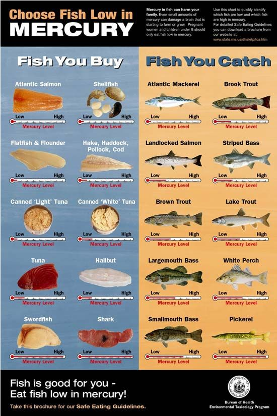 Chart On Mercury Levels In Fish