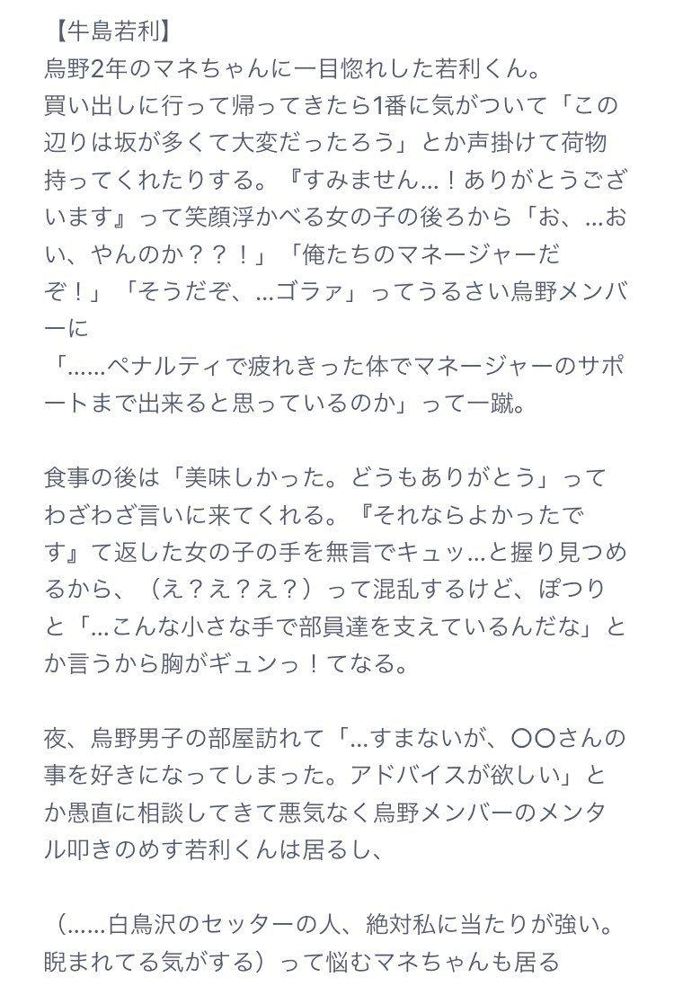 小説 マネージャー 夢 ハイキュー