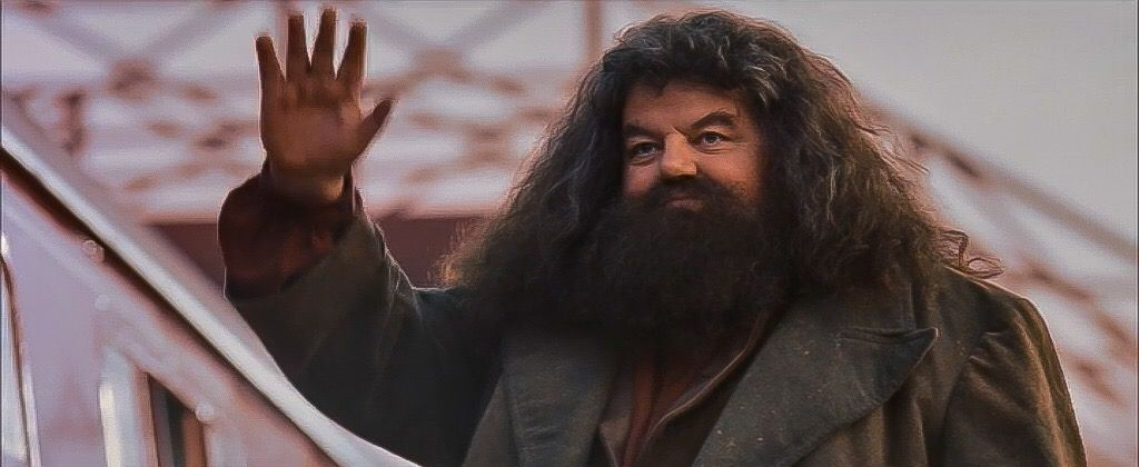 Harry Potter And The Sorcerer S Stone Hagrid Waves To Harry As The Hogwarts Express Leav Harry Potter Characters Harry Potter Fanfiction Harry Potter Journal