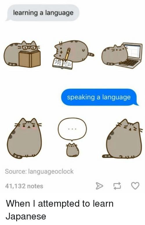 Learn Japanese Memes Yahoo Image Search Results Japanese Memes Learn Japanese Studying Memes