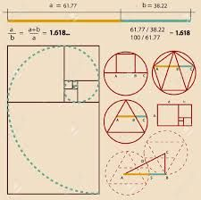 Bilderesultat for Golden ratio