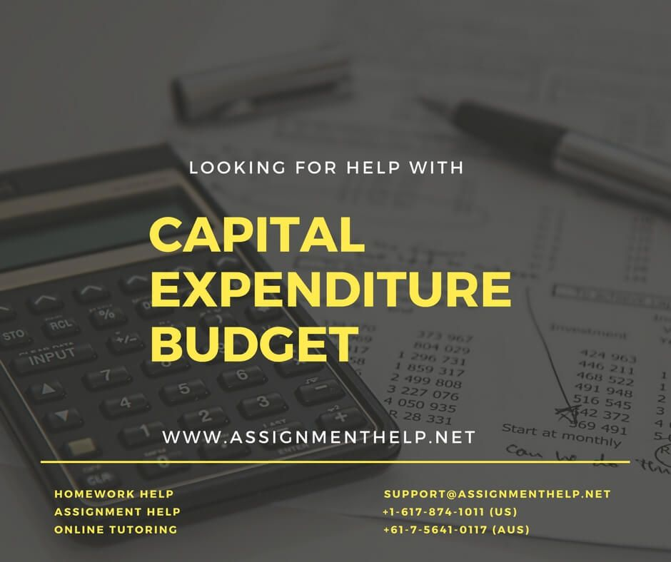 Help with Capital Expenditure Budget http//www