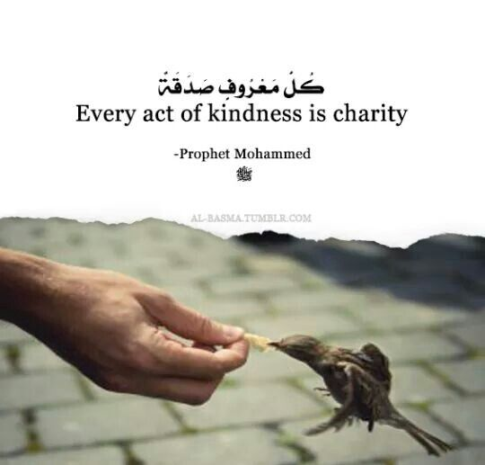 Every Act Of Kindness Is Charity Islamic Quotes Prophet Muhammad