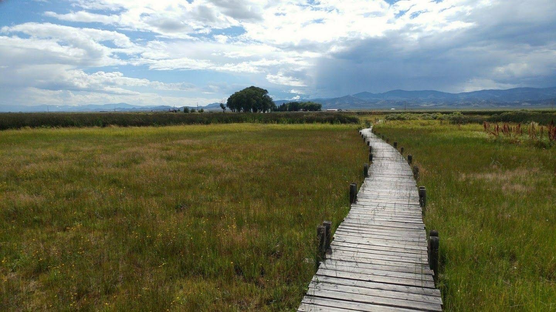 Path toward Healing | Clinical social work, Psychology today
