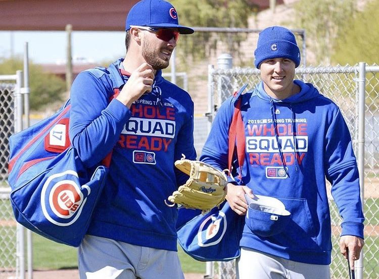 Spring Training Bryzzo Chicago Cubs Baseball Cubs Players Cubs Baseball