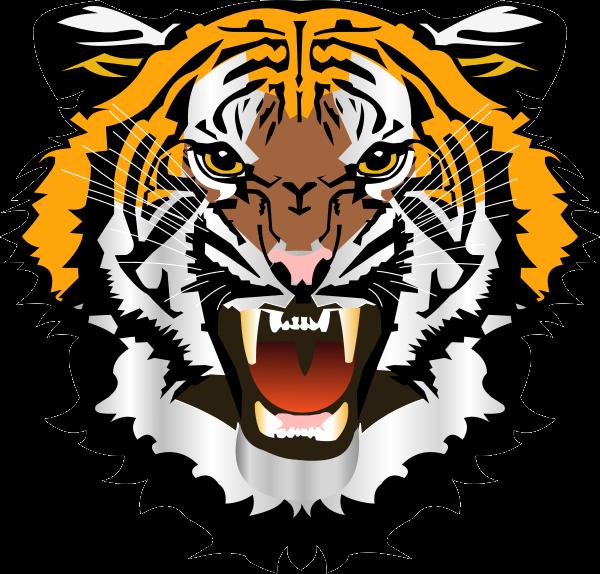 Tiger Png Logo Tiger Free Png Images Tiger Face Tiger Face Drawing Colorful Drawings