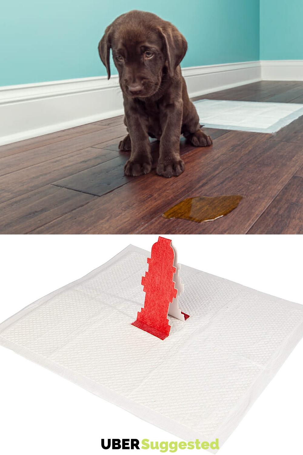 PopUp Fire Hydrant Pee Pads For Dogs Accidents Made On