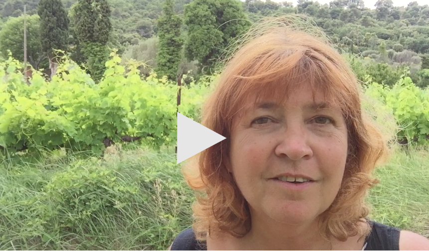 Postcards from Provence – How Richard Branson Listens