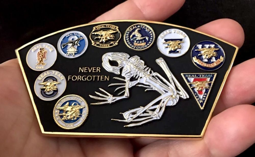 Details about USN NAVY SEALS SEAL TEAM 6 VI BONE FROG NSW PATCH