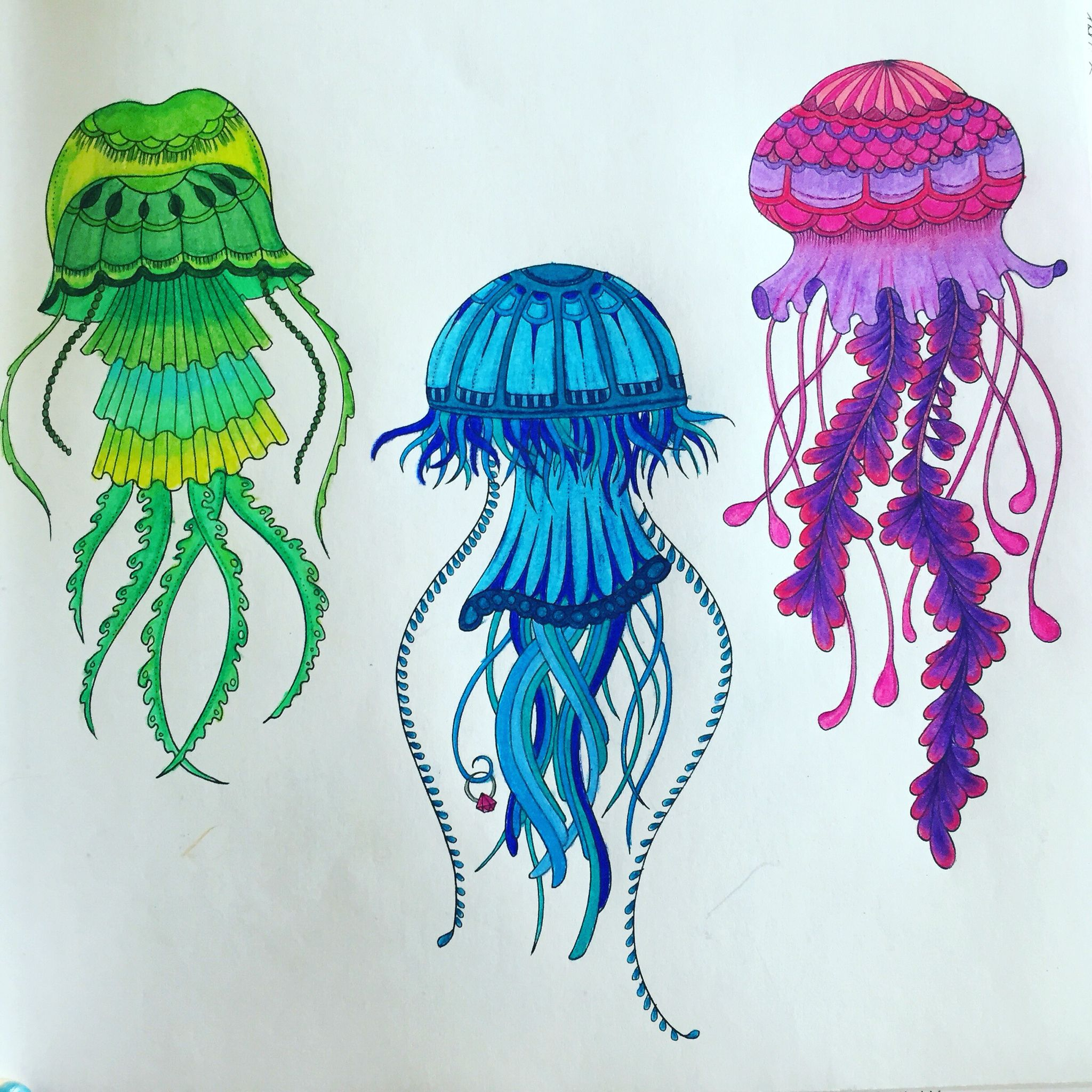 Lost Ocean Adultcoloring Book By Johanna Basford Rainbow Jellyfish Colorir Fotos