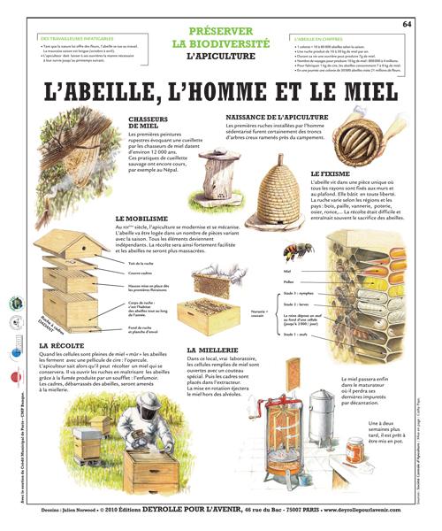 Super Imagerie des abeilles : la ruche, l'apiculteur, le pot de miel, la  KS69