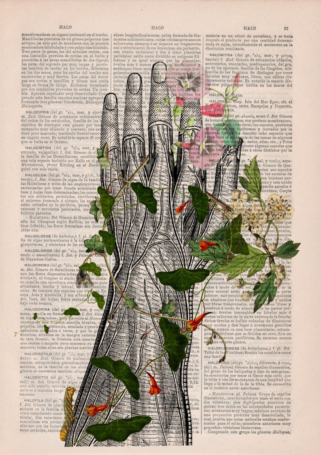 BOGO Sale Human hand with flowers Anatomy Print on dictionary ...