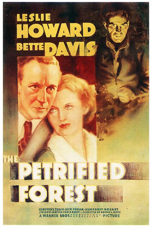Stand In 1937 Google Search In 2020 Into The Forest Movie Bogart Movies Bette Davis